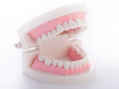 歯並び・噛みあわせを整え、虫歯・歯周病を予防する